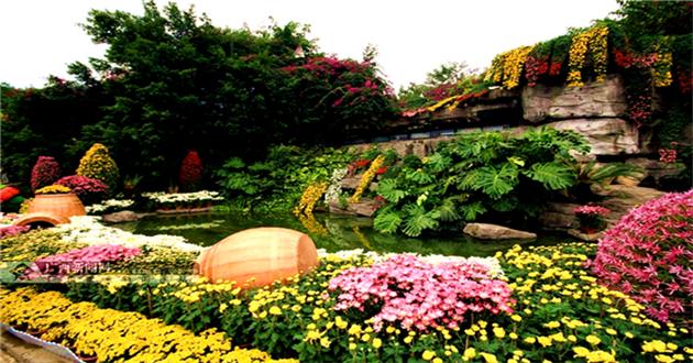 南宁市南湖公园菊花展-广西北海旅行社|越南旅游|北海